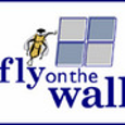 Theflyonthewall picture
